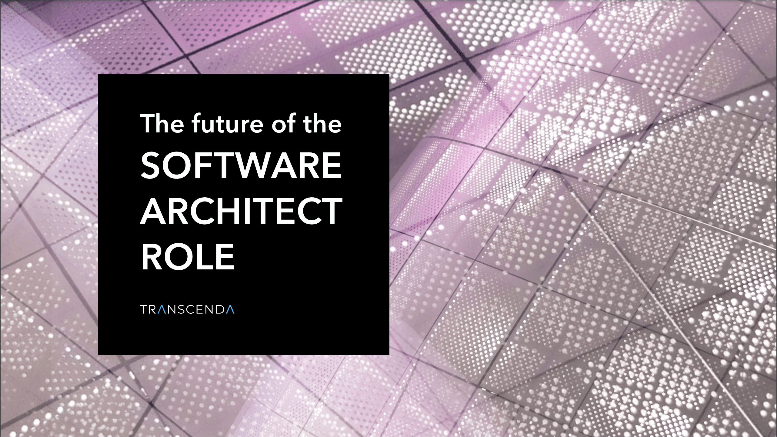 Software Architect Role